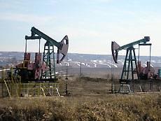 В Китае обнаружено месторождение с запасами более 1 млрд т нефти