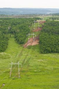 ФСК проложила свыше 90 га минерализованных полос для защиты энергообъектов Центральной России от пожаров
