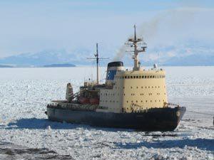 Закладка платформы «Северный полюс» состоится в 2019г