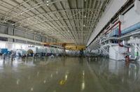 Миссия МАГАТЭ по безопасности впервые пройдет на АЭС Бушер в 2018г
