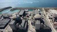 На АЭС Фламанвиль во Франции прогремел взрыв
