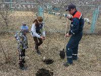 В Амурских электросетях стартовала экологическая акция