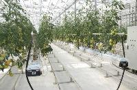 Башкирэнерго обеспечит допмощность крупному сельхозпредприятию в Уфимском районе
