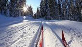 Дивногорск встречает Новый год на лыжах