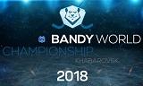 Хабаровский филиал ДРСК обеспечит бесперебойное электроснабжение чемпионата мира-2018 по бенди