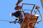 ДРСК устанавливает птицезащитные устройства на ЛЭП в Амурской области